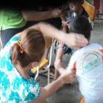 Chấn chỉnh quản lý mầm non để tránh bạo hành trẻ em